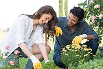 Gardening Academy